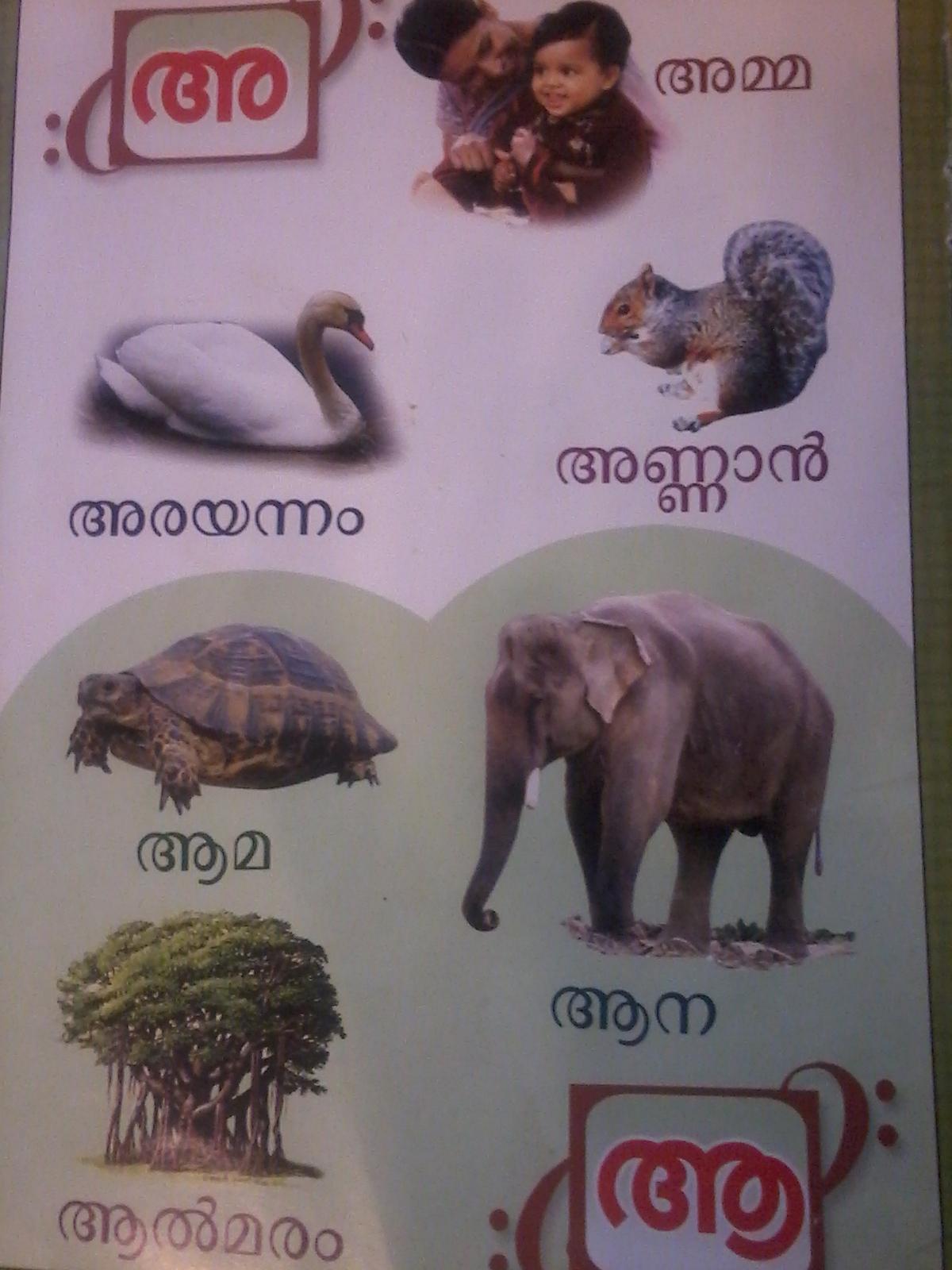 letters and words malayalam 3 aksharamala | kutti sarva kala