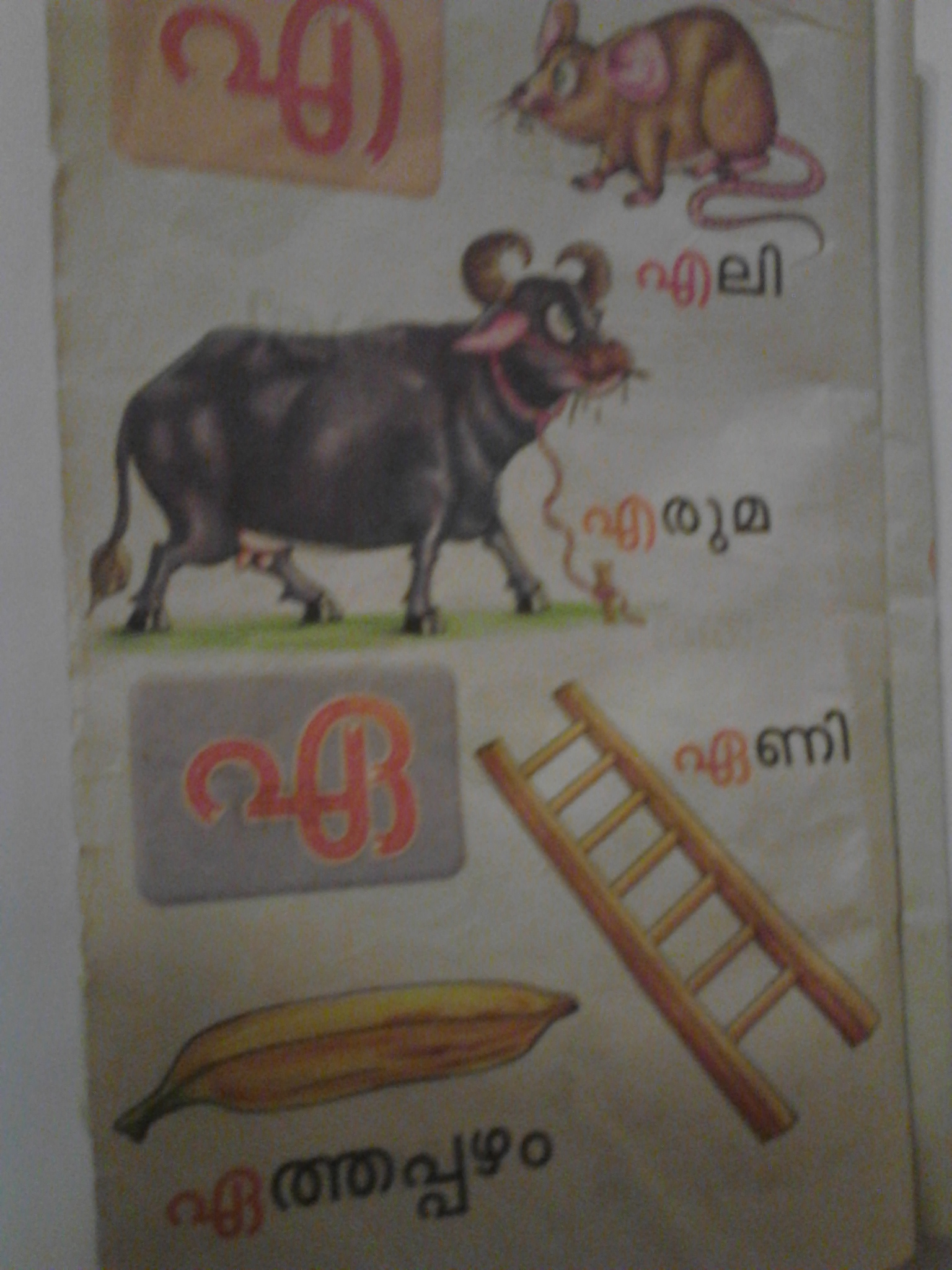 letters and words malayalam 1 aksharamala | kutti sarva kala